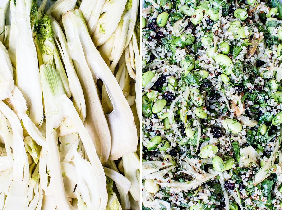 Quinoa mit Fenchel und Edamame | chestnutandsage.de