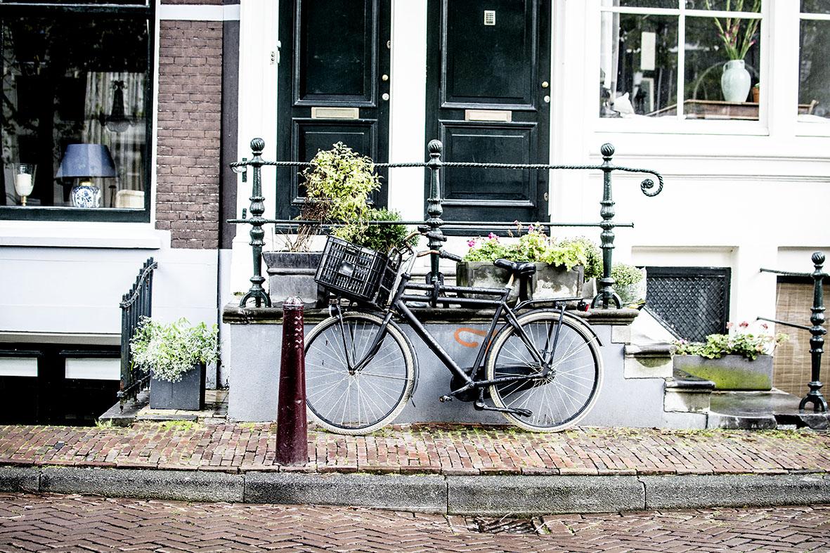 Amsterdam   Fiets   chestnutandsage.de