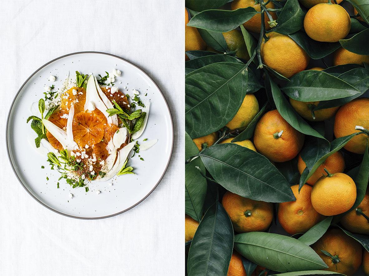 Orangensalat mit Fenchel | chestnutandsage.de